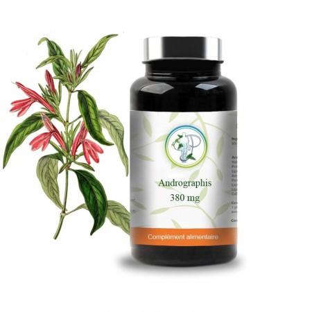 ANDROGRAPHIS - 380mg - Planticinal