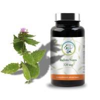 Ballota nigra - 320 mg - Planticinal