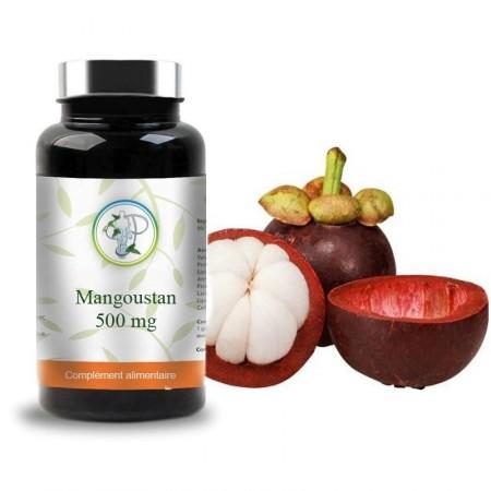 MANGOUSTAN 500mg - Planticinal
