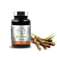 Policosanol 20 mg - Planticinal