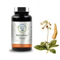 Réhmannia 500 mg - Planticinal