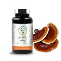 Reishi 300 mg - Planticinal