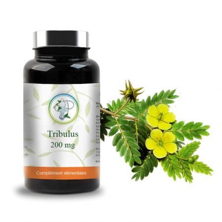 TRIBULUS - 200mg - Planticinal