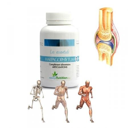 HARPAGOPHYTUM - atténue les douleurs articulaires - EasyNutrition
