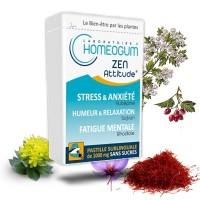 ZEN ATTITUDE - homeogum - pastilles