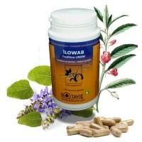 Ilowab - Botavie