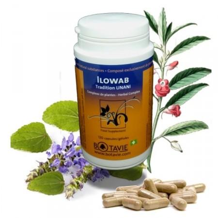 ILOWAB Minceur régime équilibre hormonal - Botavie