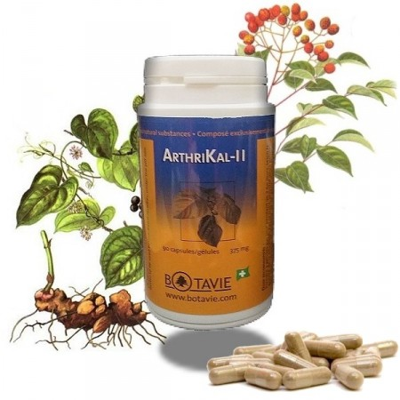 ARTHRIKAL 2 Réduit les inflammations aux articulations - Botavie