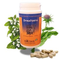 DynaFortis - Botavie dynafortis