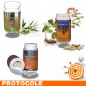 RHUMATISME 1 Protocole de traitement