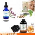 CYSTITES 2 Protocole de traitement