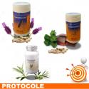 TENSION 2 - Protocole de traitement