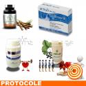 CHOLESTEROL 2 protocole de traitement