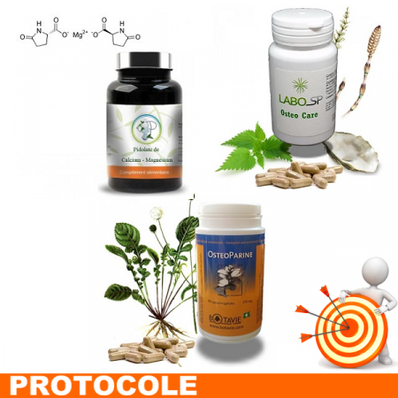 OSTEOPOROSE 2 Protocole de traitement