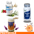TENSION 1 - Protocole de traitement