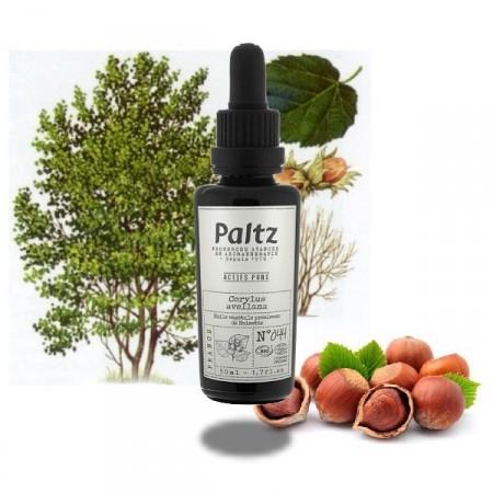 NOISETTE Huile vegetale bio - Paltz
