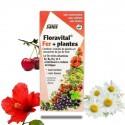 FLORAVITAL FER + PLANTES sans gluten - Salus