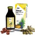SALUCUR SABAL COURGE - Salus 250 ml