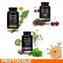 DETOX 1 Protocole de traitement