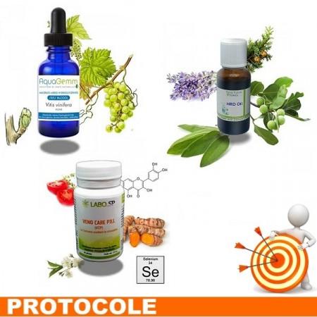 HÉMORROÏDES 2 Protocole de traitement