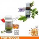 HÉMORROÏDES 1 Protocole de traitement