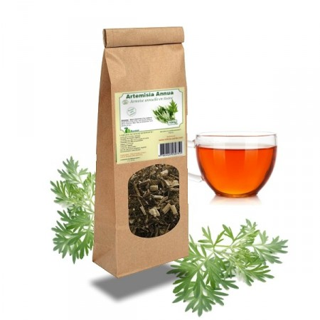 ARMOISE TISANE - Lyme et paludisme Artemisia annua