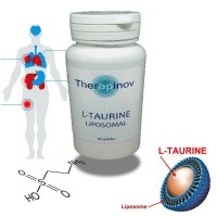 L-TAURINE Immunité, protection cellulaire puissante - Therapinov
