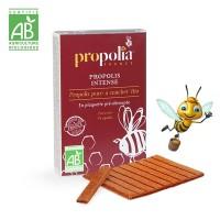 PROPOLIS à MÂCHER BIO -30ml - Propolia