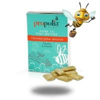 CHEWING-GUMS Propolis cannelle- 27 dragées- Propolia