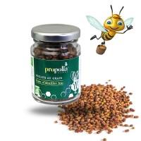 PAIN D'ABEILLE Bio - pollen- Propolia