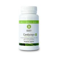 CORDYCEPS - Tonus et Vitalité - Laboratoires BIMONT
