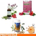 CYSTITES 1 Protocole de traitement