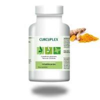 CURCUPLEX Antioxydant - Inflammations - Effiplex Dr. Schmitz