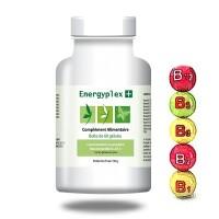 ENERGYPLEX + Carence en vitamine B - Effiplex Dr. Schmitz
