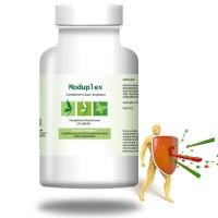 MODUPLEX - 90gél - Résistance et immunité - Effiplex Dr. Schmitz