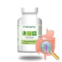 PROBIOPLEX - Restaurer la flore intestinale - Effiplex Dr. Schmitz