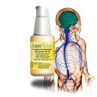 LIPO GABA Liposomé - Système Nerveux - Perfect health Solutions