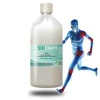 SILICIUM - Usure du cartilage - Perfect Health Solutions