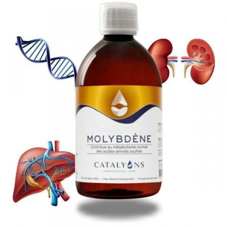 MOLYBDÈNE - 500ml - toxines foie et reins - Catalyons