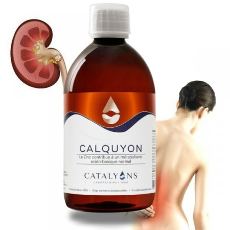 CALQUYON - calculs renaux - Catalyons