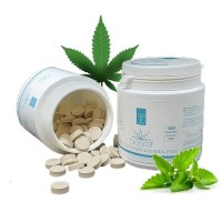 Pastilles Menthe 1% CBD - 50 - BioActif