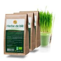 HERBE de BLÉ bio 3 x 150 g- Vitamines, minéraux - Nature et Partage