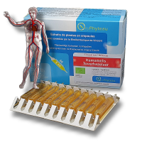 HAMMAMÉLIS Bio- OxyPhyteau Circulation sanguine- Boîte de 40 amp.