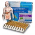 PISSENLIT Bio - OxyPhyteau - Dépuratif et digestion - Boîte de 40 amp.