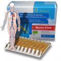 MARRON D'INDE - cellulite et circulation - Oxyphyteau