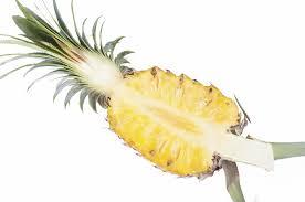 bromélaïne tige d'ananas