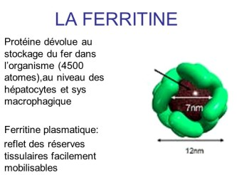 hyperferritinémie ferrilo infinie sante ferrilow