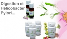 Digestion et Helicobacter pylori